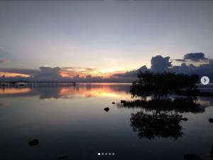 セブ オランゴ島