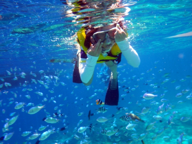 フィリピン セブ島 アイランドホッピング シュノーケリング