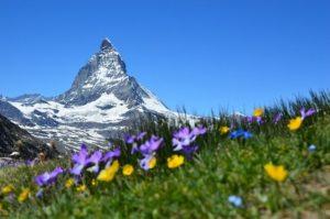 ベストカウントリーランキング スイス